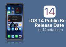 ios 14 public beta release date