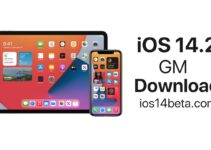 iOS 14.2 GM (Golden master) Download